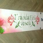 Banner poliplan mari dimensiuni craiova | trandafirii veseli craiova | publicitate craiova
