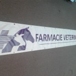 Banner poliplan mari dimensiuni craiova | farmacie veterinara craiova | publicitate craiova